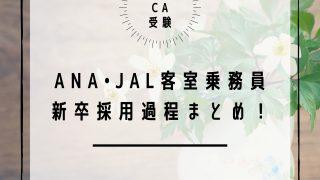 【日系CA受験】ANAとJAL客室乗務員・新卒採用受験まとめ!